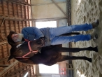 Svanto's Horse Assisted Coaching